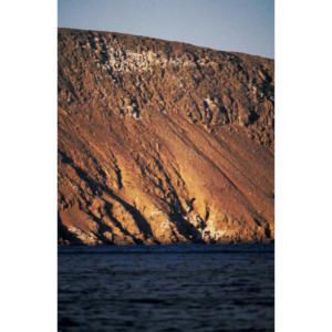 Back Side of San Miguel Island