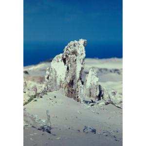 Caliche, San Miguel Island #30